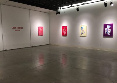 Installation view of Emily Hake's Master of Fine Arts Exhibition at the Art Lofts Gallery, University of Wisconsin-Madison