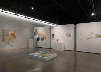 Installation view of Hannah Bennett's Master of Fine Arts exhibition at the Art Lofts Gallery, University of Wisconsin-Madison