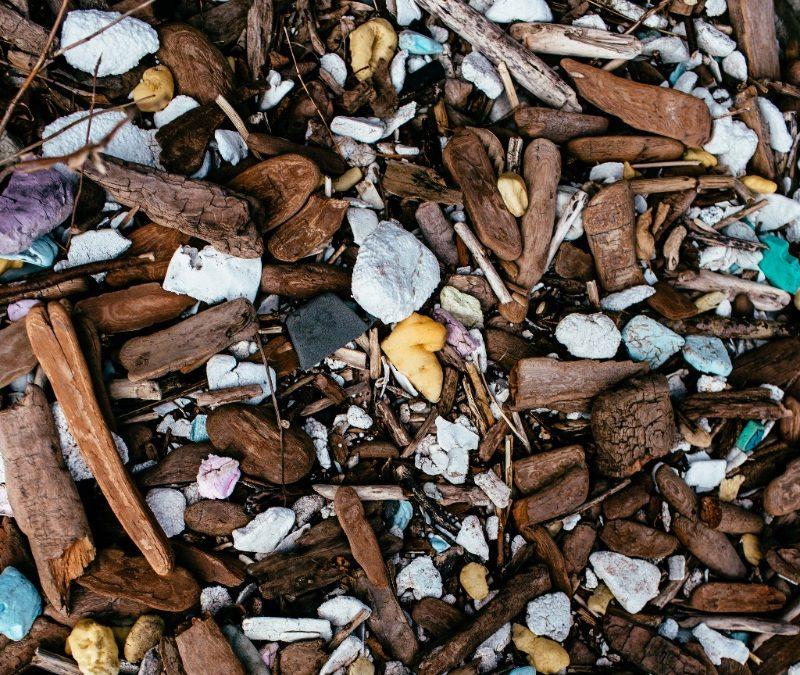 white trash/brown trash Exhibition