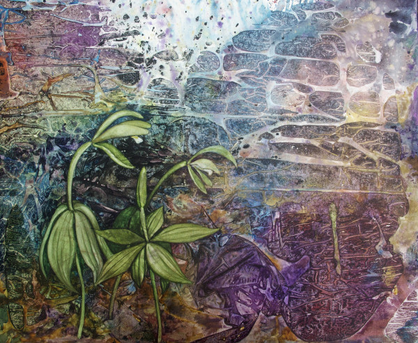 Drawing on Nature and Circumstance: Two Water-Media Exhibits by Helen Klebesadel MFA '89