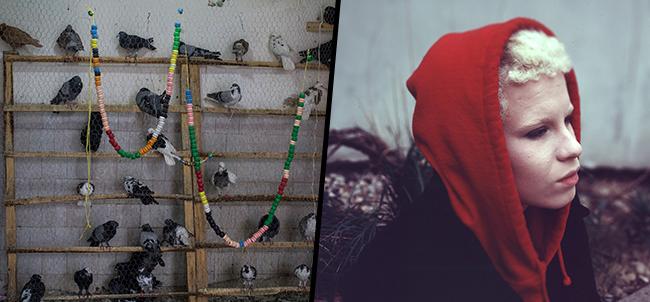 Into the Light by Maryam Ladoni & Kayla Story