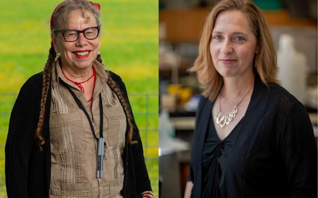 2 UW-Madison professors win prestigious $625,000 MacArthur 'genius' award by Kelly Meyerhofer