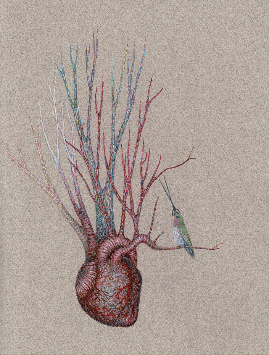 Tending to the Heart, colored pencil on paper drawing by Brooke Leland.