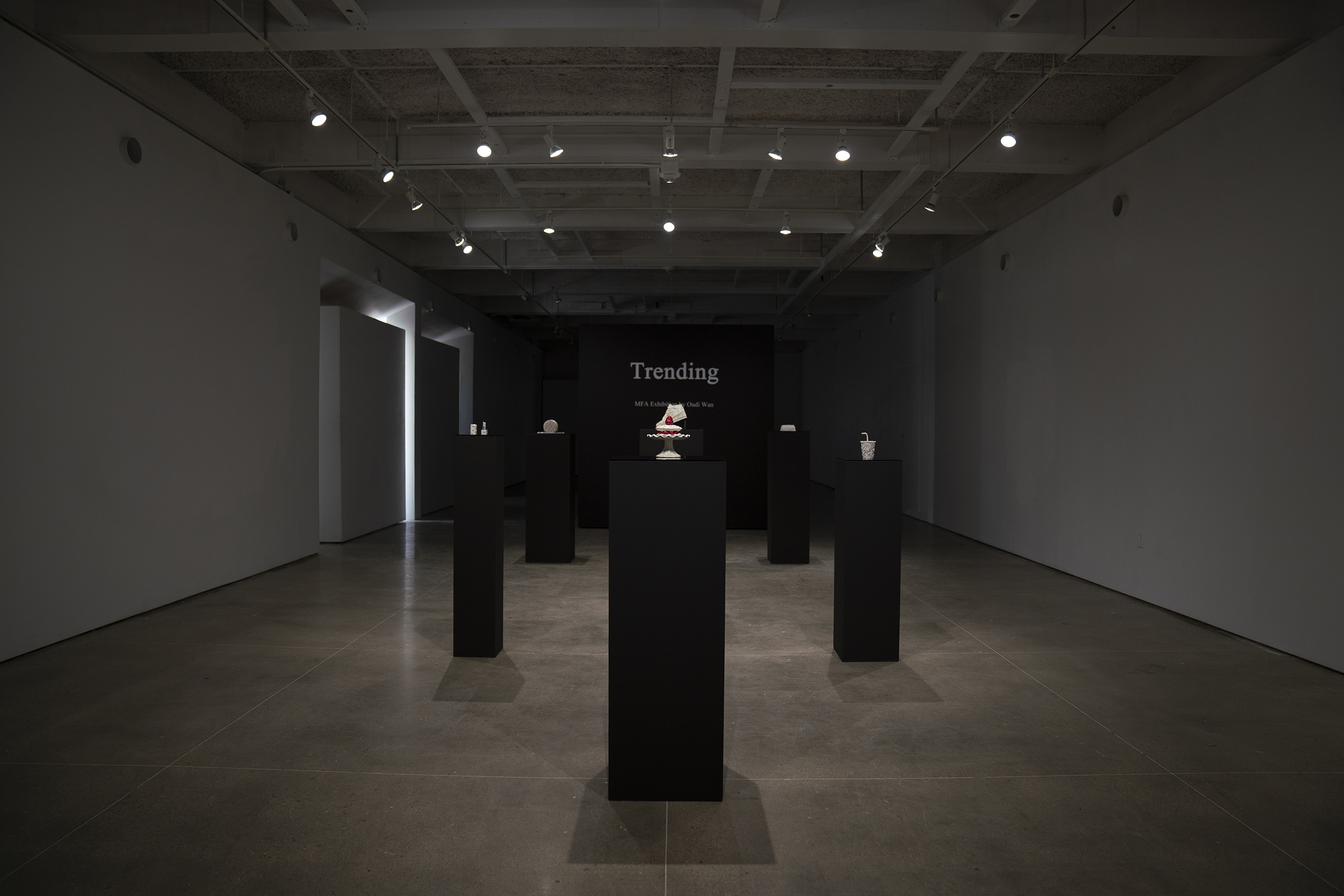 Installation view of Trending Master of Fine Arts Exhibition by Oudi Wan at Gallery 7, Humanities Building, University of Wisconsin-Madison.